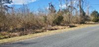 100 block of Cowell Loop Road, Bayboro, NC  28515 - Prime Country Residential Home Site, 0.38 +/- Acre with Public Water & Sewer Available, Zoned R-8 - 5